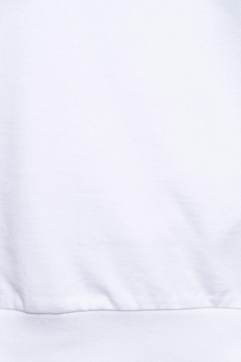 Paul & Shark Sweater Crew Neck  100% Organic Cotto Foto 3